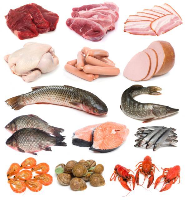 البروتينات المحتوية على فيتامين ب