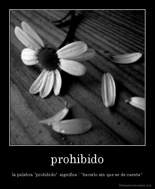 Imagenes de Amor: Imagenes Bonitas Para Facebook