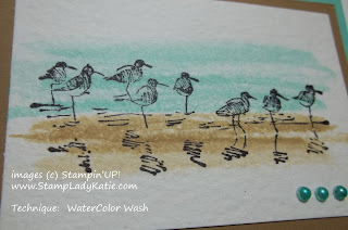 Watercolor Wash technique with Stampin'UP!'s Wetlands stamp set.