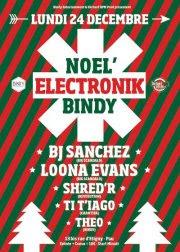 Noel Electronik