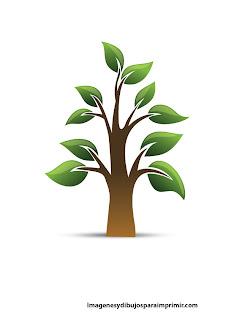 Arbol con grandes hojas