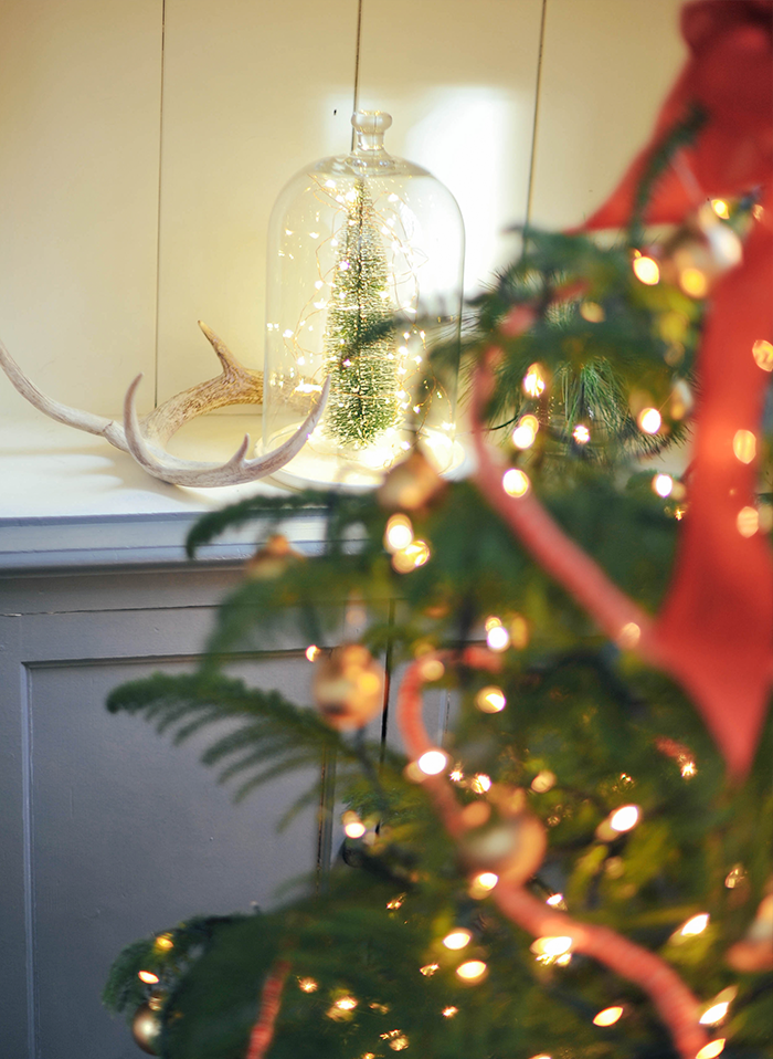 Holiday Christmas Glass Dome Terrarium Tree