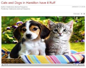 Ruff in Hamilton