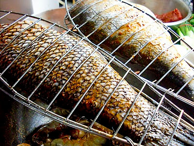 fish-in-grilling-cages