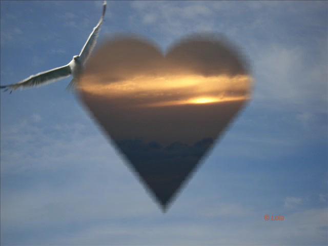 Inima de Pescarus!!!