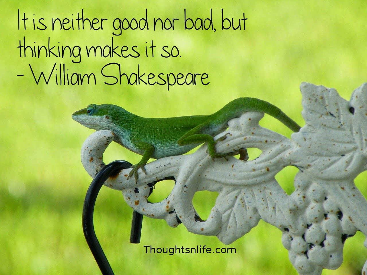Thoughtsnlife.com: It is neither good nor bad, but thinking makes it so. - William Shakespeare