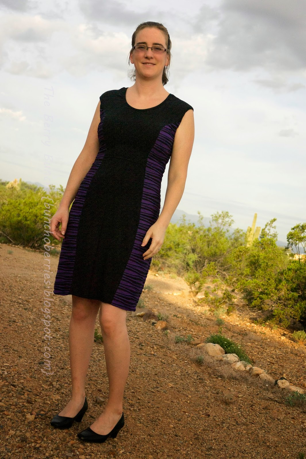 The Berry Bunch: Color Block Dress: So Sew Easy Blog tour