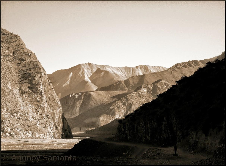 Himalayan Shades