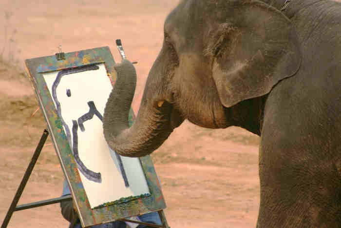 Portrait Painting Elephant - Ramona