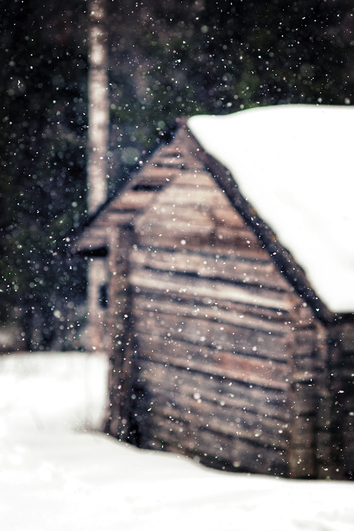 Snow shed