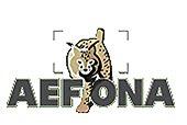Socio de AEFONA