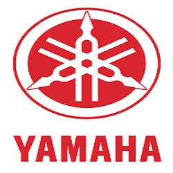 Yamaha Walk-In Drive for Freshers 2015