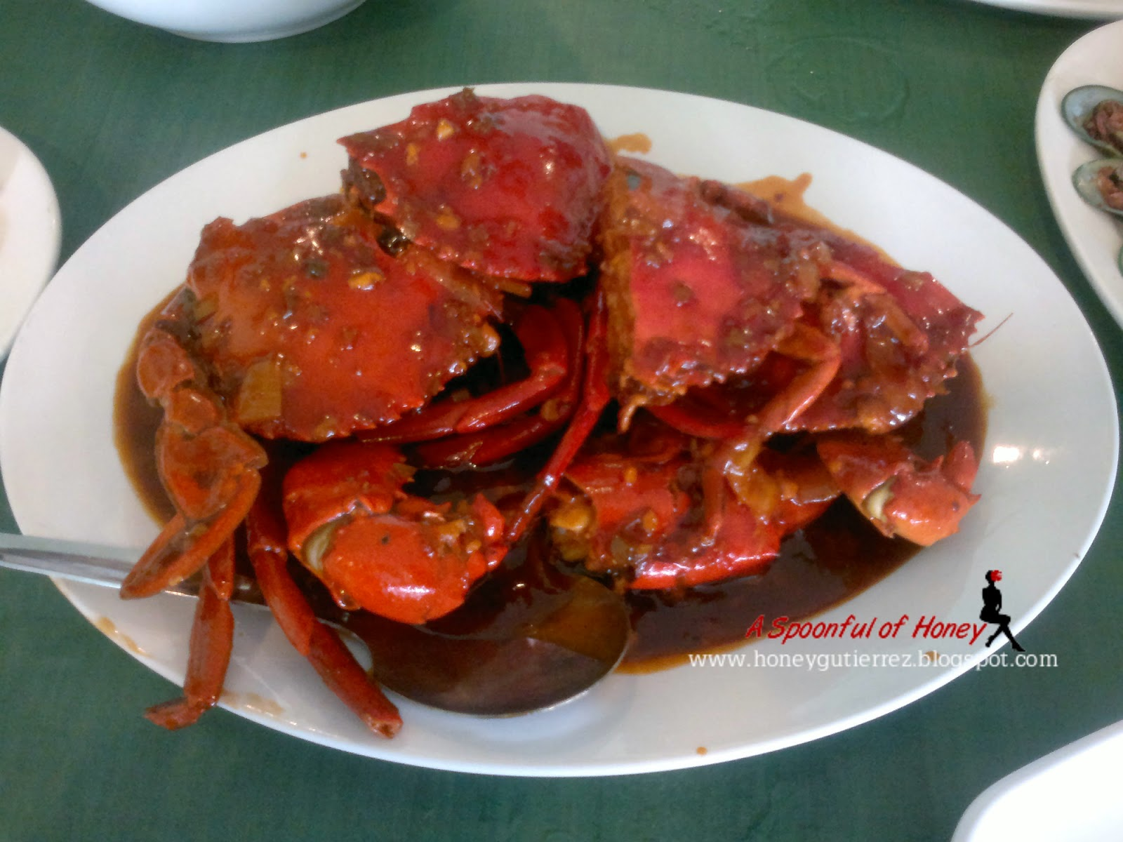 how to go to dampa macapagal