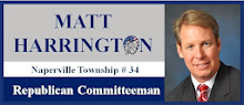 Naperville Tpwnship Republican Committeeman #34