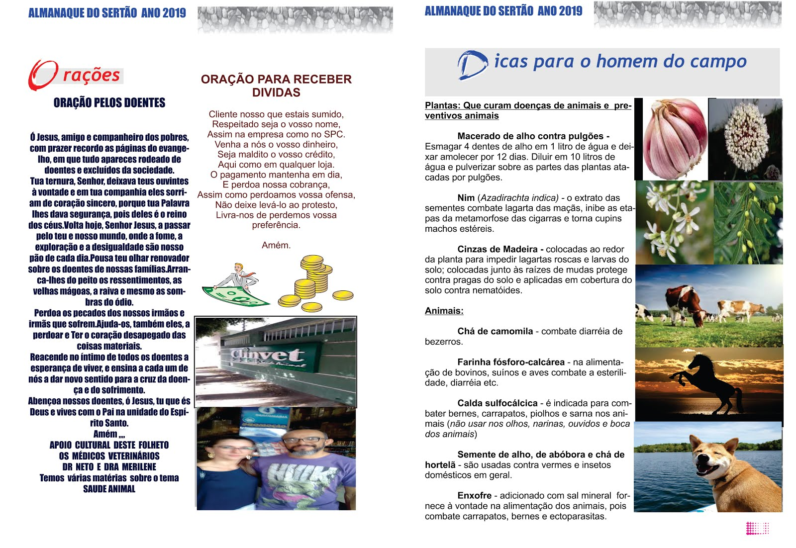 DICAS  DE SAÚDE ANIMAL  ORAÇÃO DE RECEBER  DÍVIDAS  ENTRE OUTRAS  CURIOSIDADES