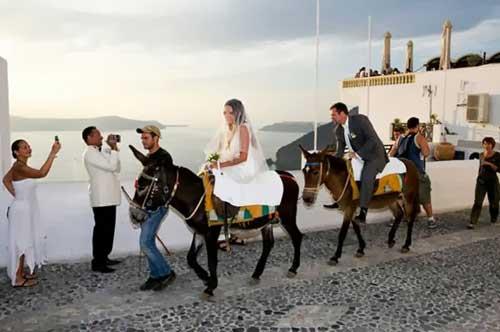اذا بدأ الزفاف لابد من حضوره....ادخل لتعرف من؟؟؟؟؟.