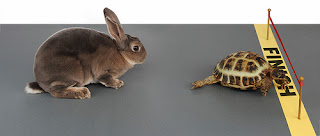 Narrative text - generic structure - story of hare and tortoise