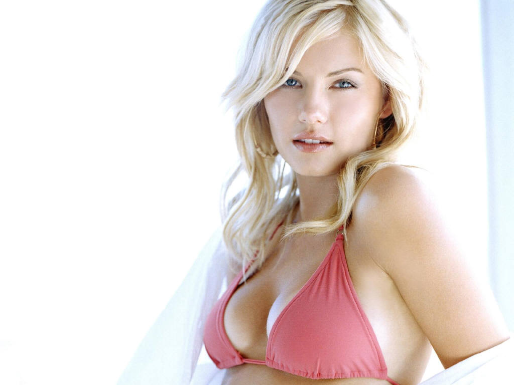 Elisha Cuthbert Hot wallpaper | Zimbio Inspired C Cup Breast Celebrities