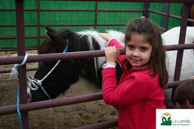 Feria Ganadera de Jérez del Marquesado - Fotografías de Camping La Lomilla