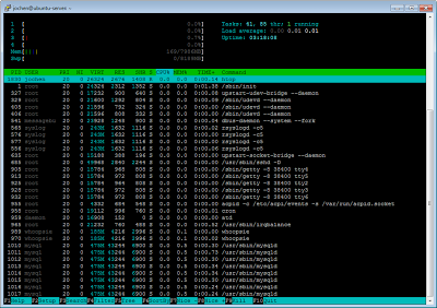 htop showing Ubuntu Server 12.10 footprint
