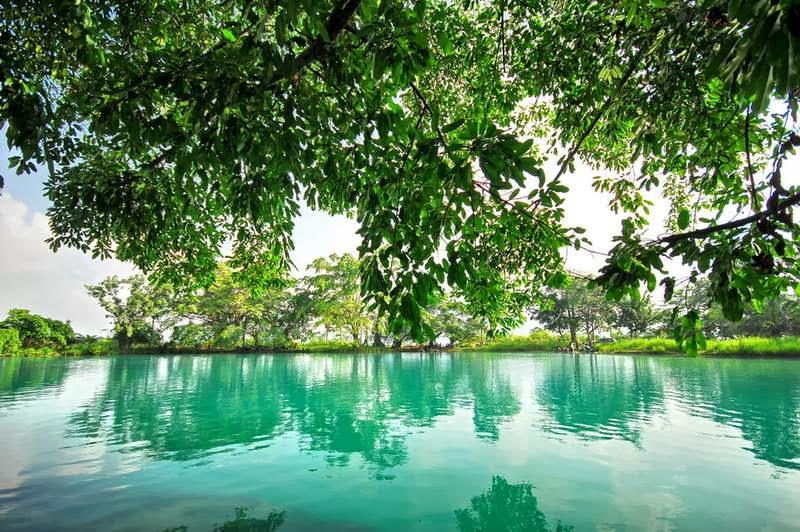 Keindahan Danau Linting Deli Serdang