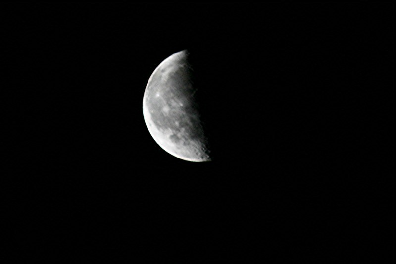 Fourth Quarter Moon nature tales and camer...