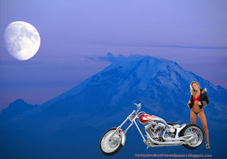 Desktop wallpapers Harley Davidson Beautiful Bikini Girl Standing near Bike in Blue Moon Mountain wallpaper