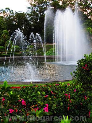 Fontes do jardim do Museu do Ipiranga, em São Paulo - Por Tito Garcez