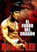El furor del dragón (1972)