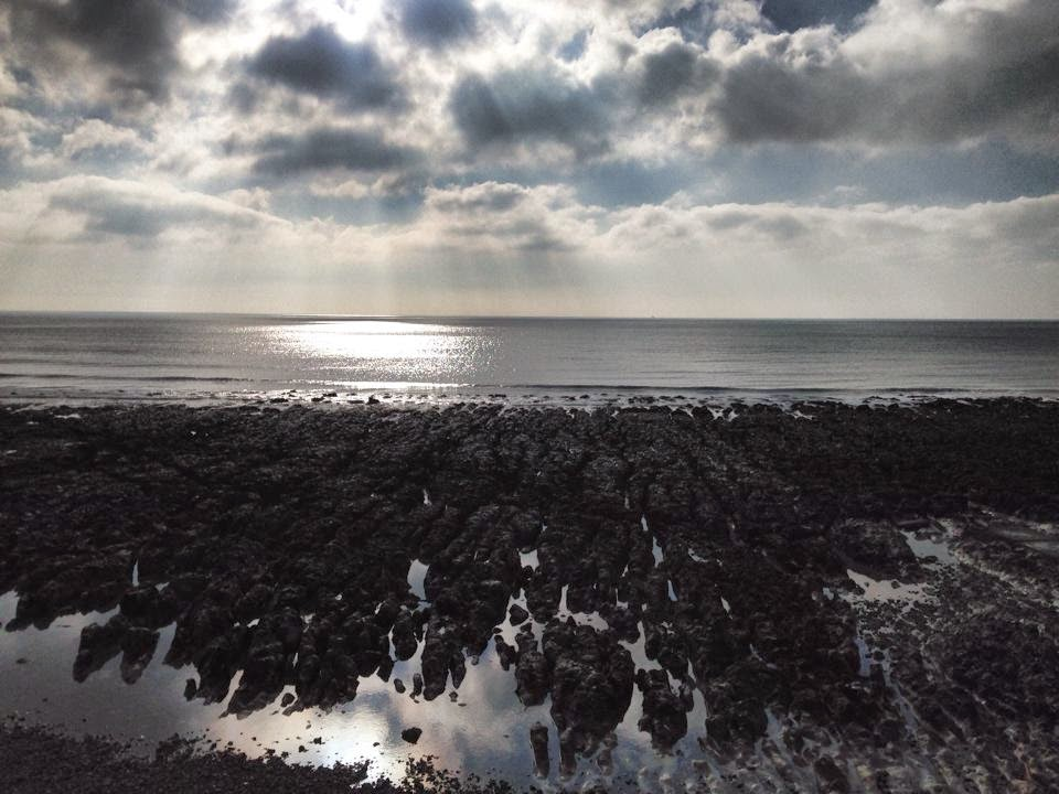 Undercliff walk - Rottingdean - Brighton - copyright Tess Agnew