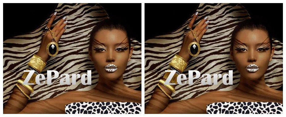 ஜ۩۞۩ஜ*ZePard*ஜ۩۞۩ஜ