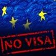 """IDIS """"Viitorul"""" lansează un portal specializat pe liberalizarea regimului de vize cu UE."""