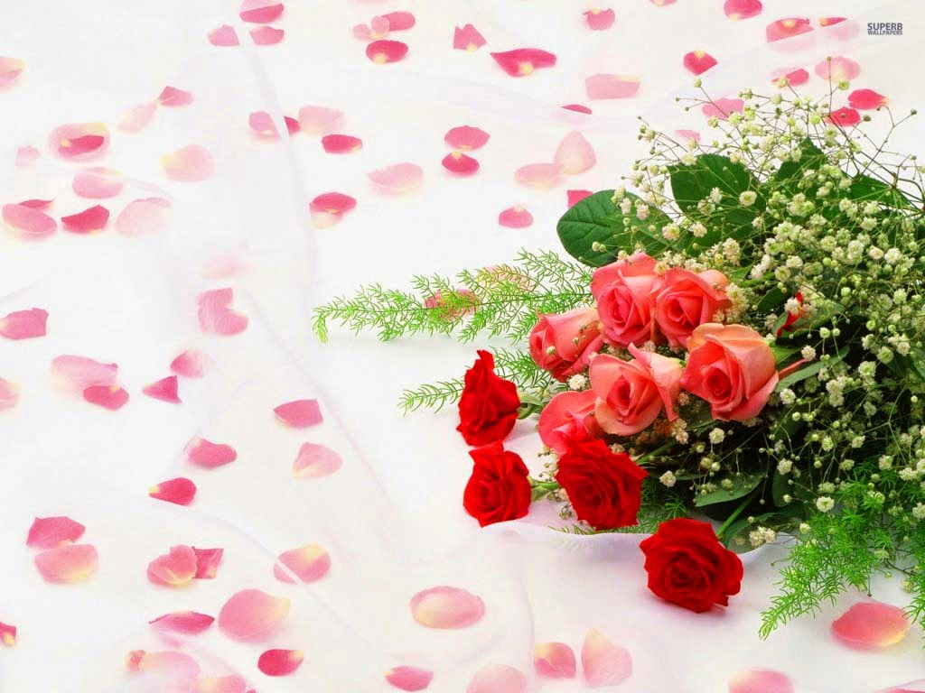 morning-with-red-pink-color-roses-hd