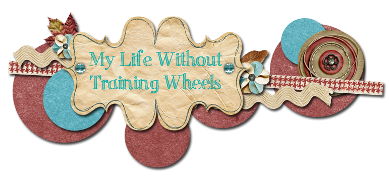 My Life Without Training Wheels