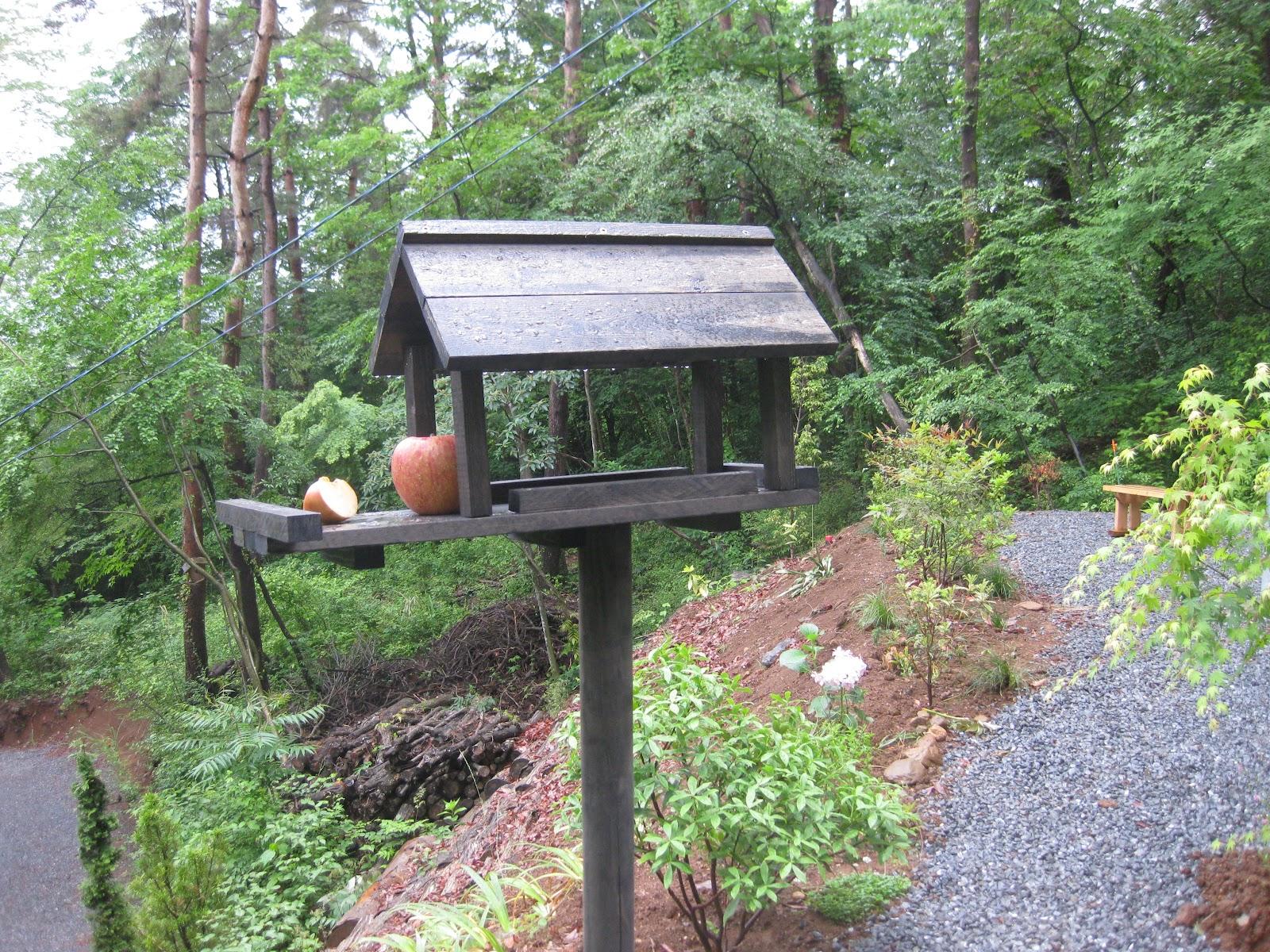 野鳥の巣箱の作り方と材料一式   田舎の暮らし …