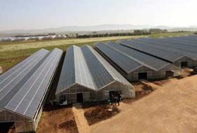 Solar panels cover in Sardinia a greenhouse