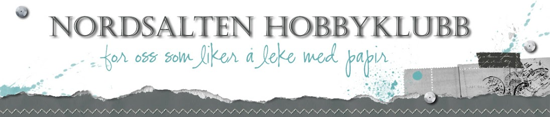 Topp 3 hos Nordsalten hobbylubb!