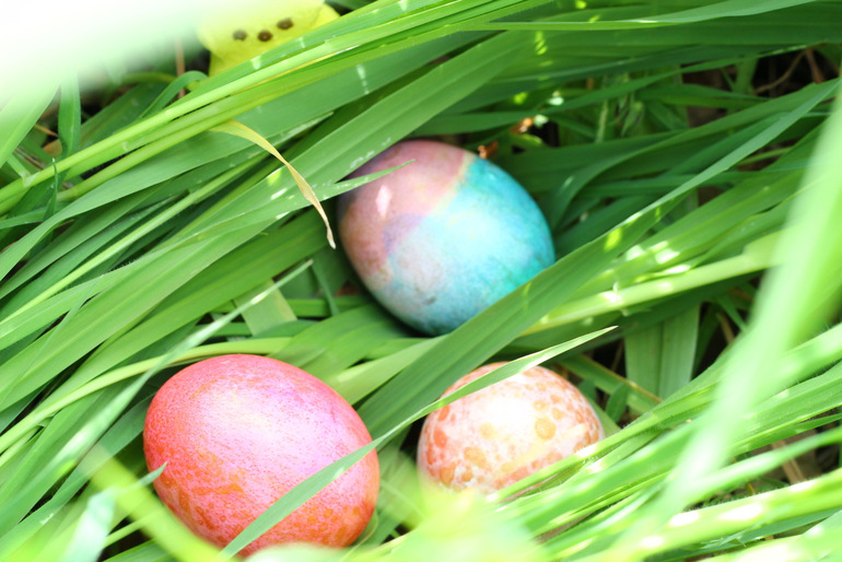 Easter Bunnies! | A•Mused