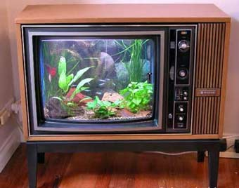 Mass Television Watching Session in 70s