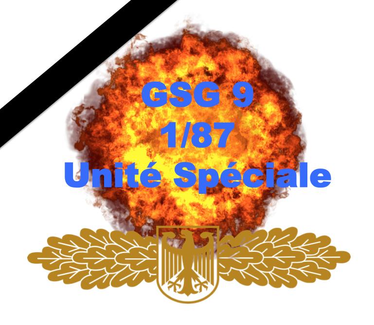 Hommage au Lieutenant Colonel Arnaud BELTRAME