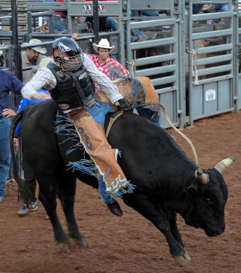 Road Less Traveled >> Random Images from a Nightowl: 2011 Nevada County Fair Bull Riding