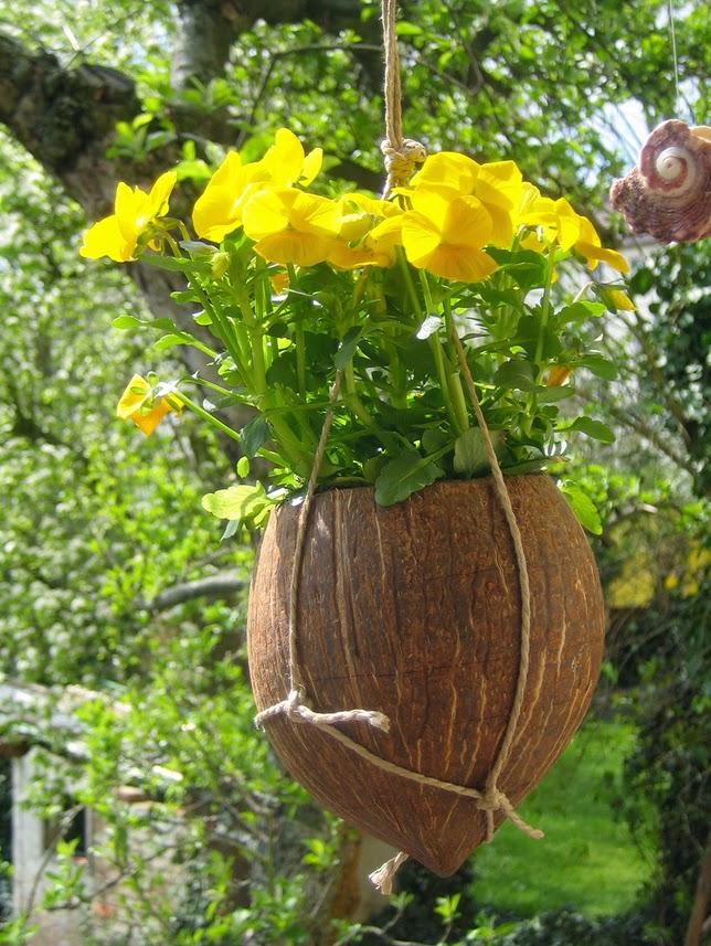 os-melhores-de-2013-flores-e-plantas