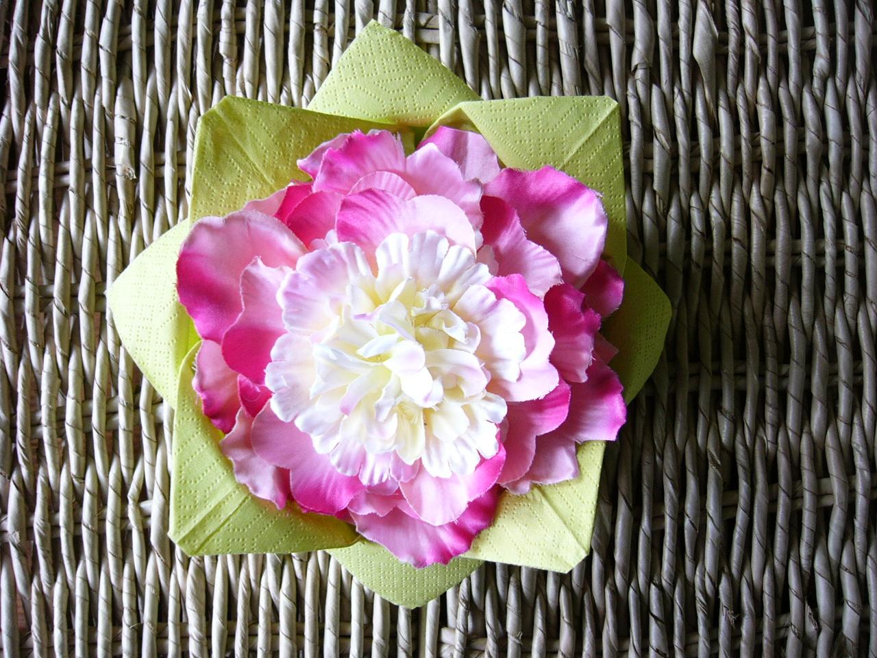 http://2.bp.blogspot.com/-oK3amx161gA/T5B2FwrhSTI/AAAAAAAAApA/zSPcYcuIoPM/s1600/lotus1.jpg