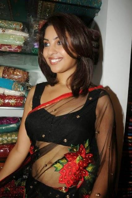 richa gandyopadhyay hot cleavage navel hd wallpaper transparent saree