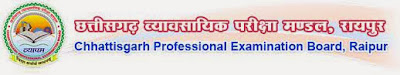 Chhattisgarh Professional Examination Board Recruitment 2013