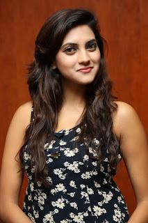 Sita Narayan Latest Pictures  (11).jpg