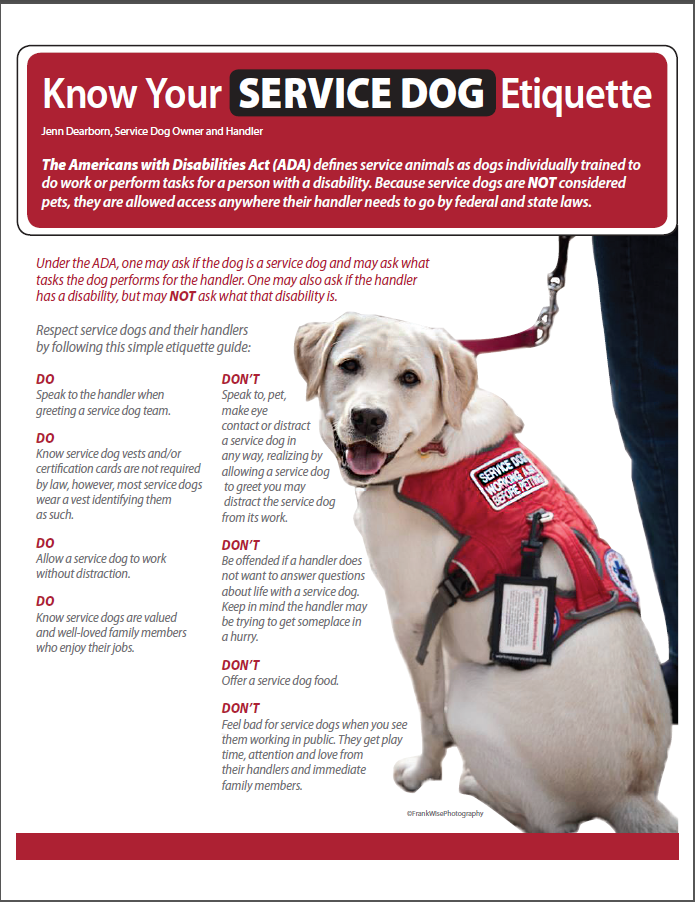 Train Your Own Service Dog How To