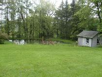 The duck barn & pond