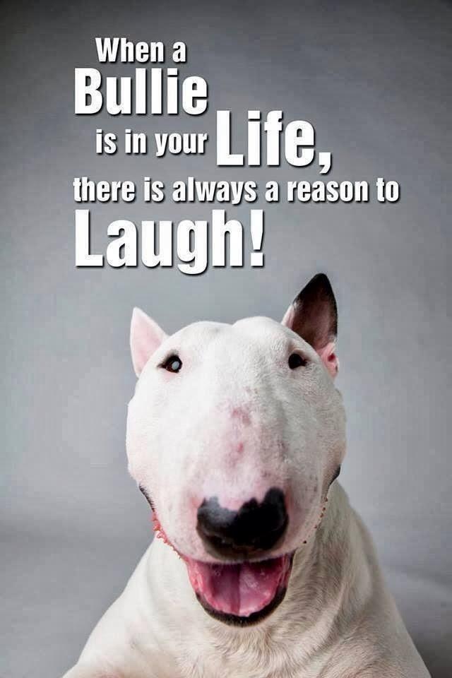siempre se rie
