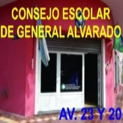 CONSEJO ESCOLAR DE GRAL. ALVARADO